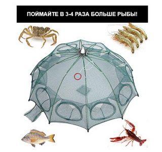 Рыболовная верша-паук